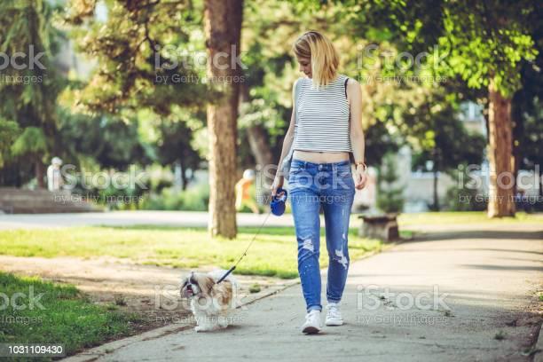 Woman walking a dog in public park picture id1031109430?b=1&k=6&m=1031109430&s=612x612&h=majisktubw0hyzgtby0z9zzxhd3am8wwzos8w63mivs=
