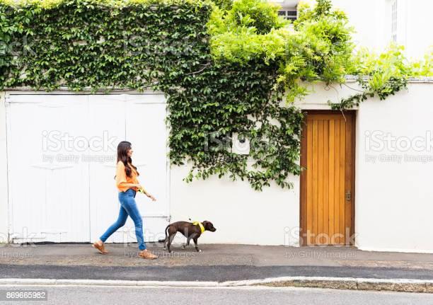 Woman walking a dog in the suburbs picture id869665982?b=1&k=6&m=869665982&s=612x612&h=6stmqtqwxrek rbtgawjcd9qkhrye3z0j4f3ra7f 5e=