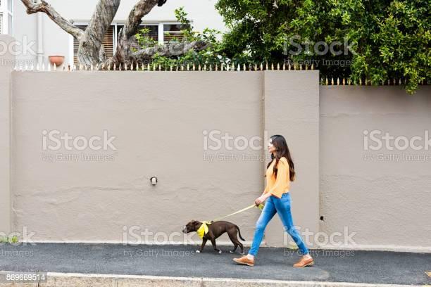 Woman walking a dog in the suburbs picture id869669514?b=1&k=6&m=869669514&s=612x612&h=xgiwkd9f xnbyhwikju7akffl whomokryq0g nvkws=