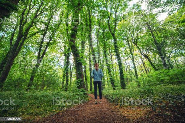 Photo of Woman walking alone in the forest