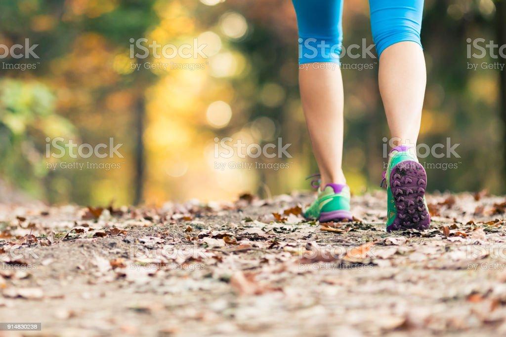 Frau spazieren und Wandern im herbstlichen Wald – Foto