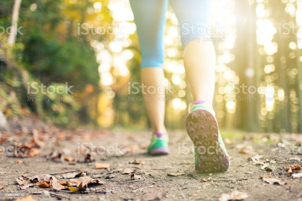 Frau spazieren und Wandern im herbstlichen Wälder – Foto