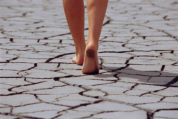 Woman walking barefoot across cracked earth  lake bed stock pictures, royalty-free photos & images