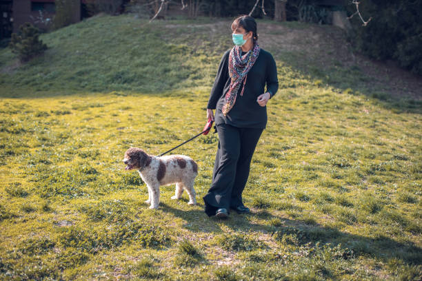 woman walking dog in the park with face mask stock photo