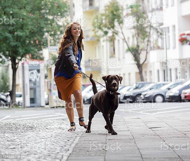 Woman walking dog on a city street picture id174335218?b=1&k=6&m=174335218&s=612x612&h=pjuv6p31x3cbhd8uyp9d2c7xhfrrz y8jovxd5jfckg=