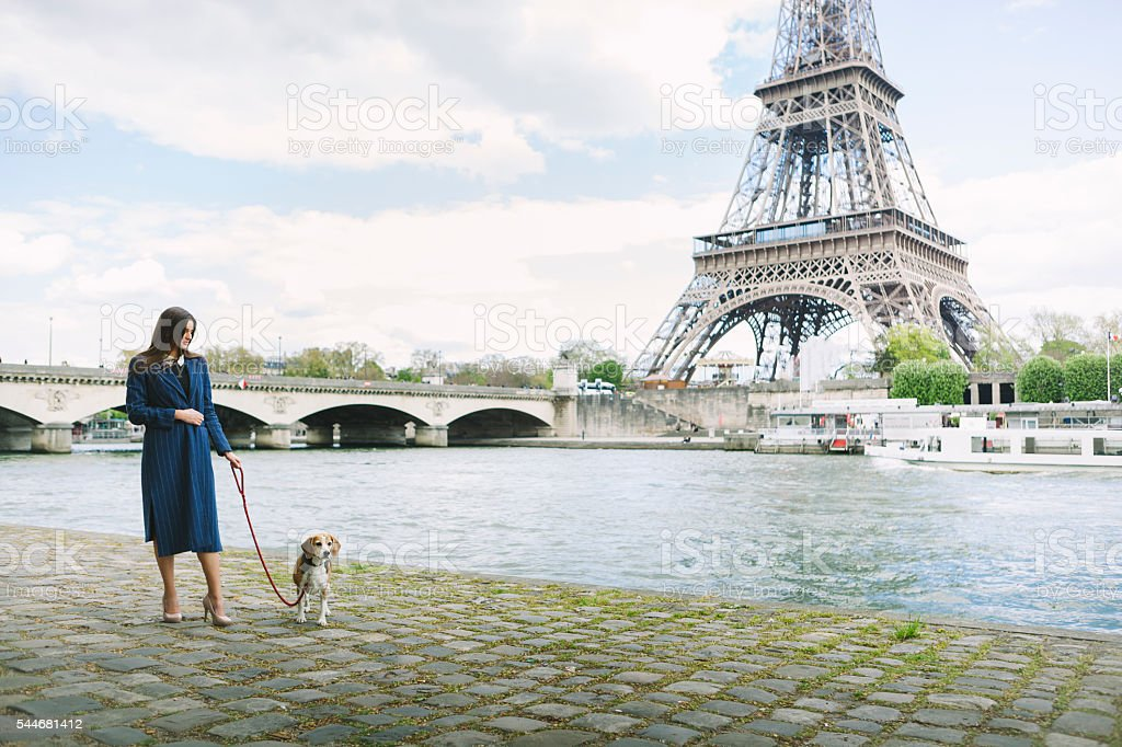 Woman Walking Dog On The Riverside By Eiffel Tower stock photo