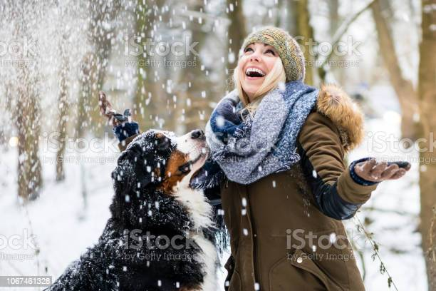 Woman walking her dog in the winter and both explore the snow picture id1067461328?b=1&k=6&m=1067461328&s=612x612&h=rhwwyzssby2xwyx72asnsulvf8oqp gu46nwtwljbdy=