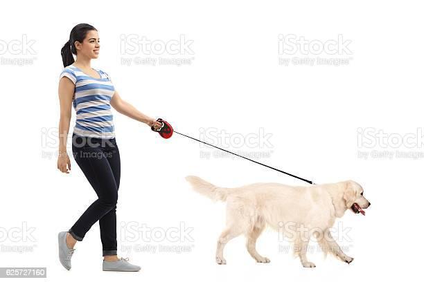 Woman walking her dog picture id625727160?b=1&k=6&m=625727160&s=612x612&h=xxkdl5iwxx9puaxs87moda vksqpbli70varx1hubxa=