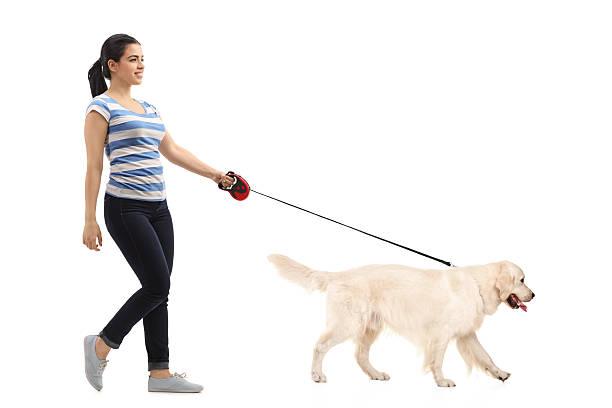 Woman walking her dog picture id625727160?b=1&k=6&m=625727160&s=612x612&w=0&h=hxarxcwdosh4r5gy  qzffditqshcl ywqmmr2p5wmq=