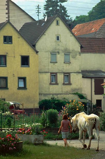 Woman walking horse Germany stock photo