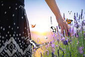 Woman walking down the field and touching the lavender flowers. Colorful butterflies are flying around.