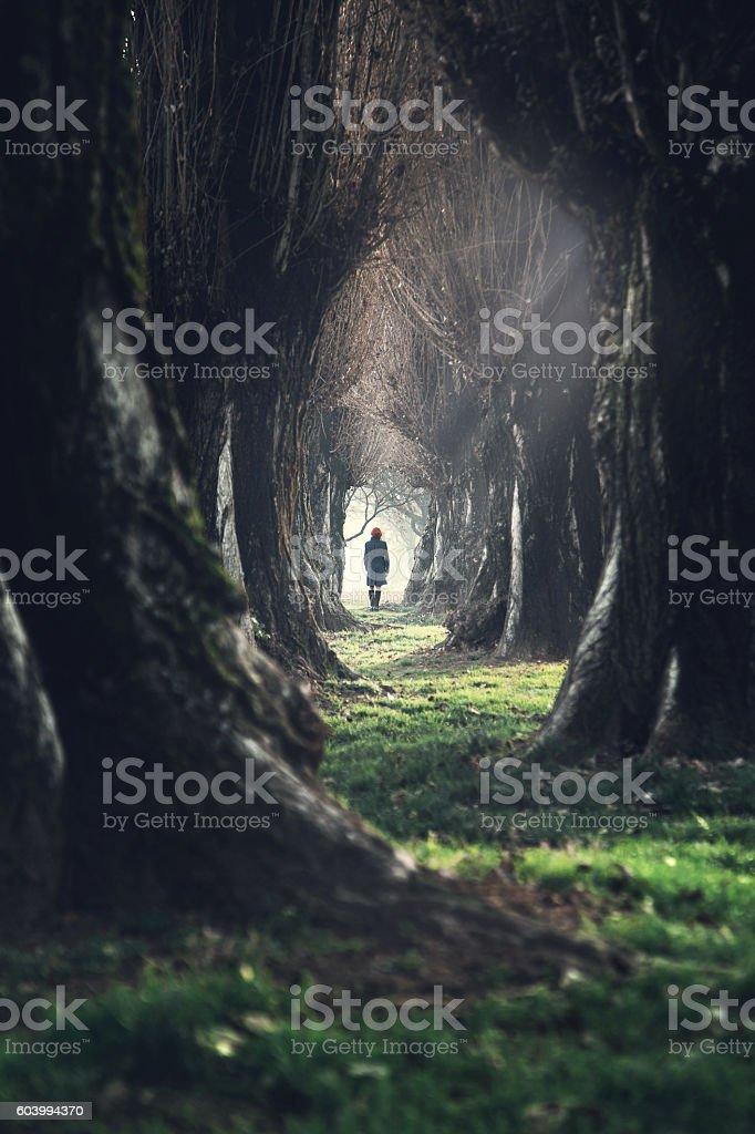 woman walking in mystic dark forest stock photo