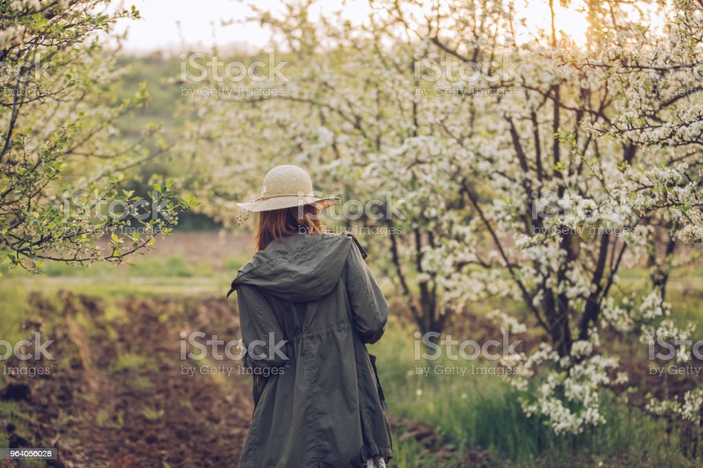 Woman walking in orchard - Royalty-free Adult Stock Photo