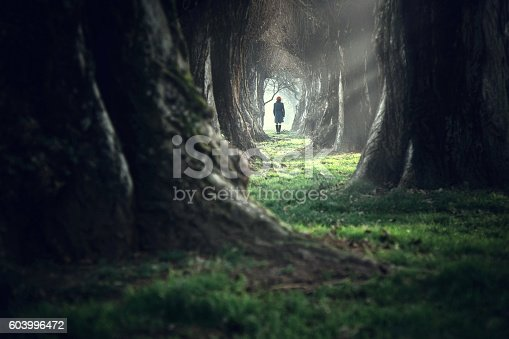 istock Woman walking in the mystic magic deep forest 603996472