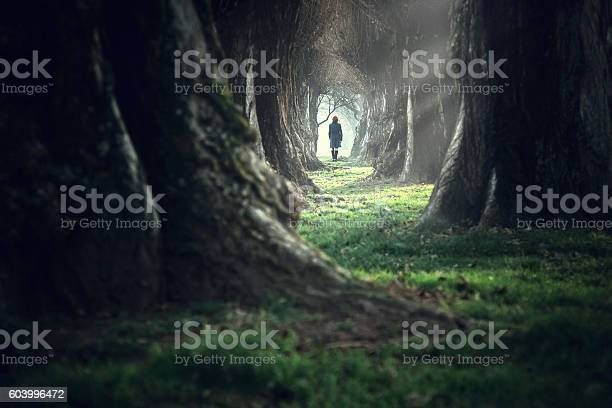 Woman walking in the mystic magic deep forest picture id603996472?b=1&k=6&m=603996472&s=612x612&h=zajf2ava 1n3grctmfuberpjri9docw0xgp7fzz50o8=