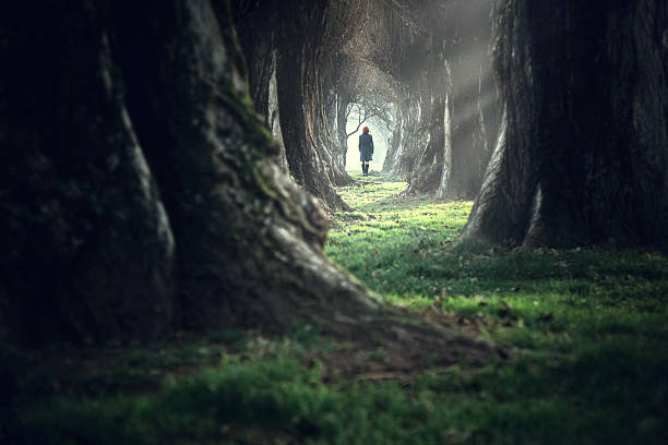 Woman walking in the mystic magic deep forest stock photo