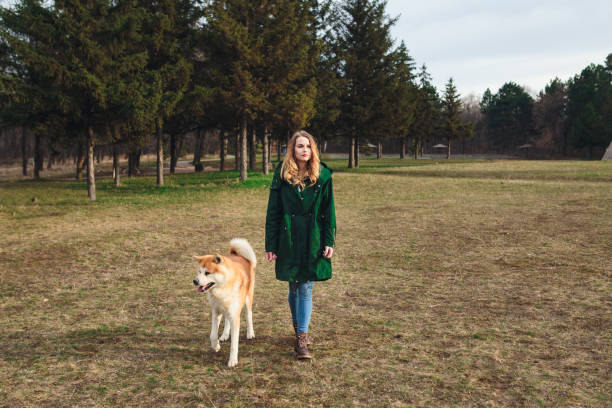 Woman walking in the public park with Akita dog stock photo