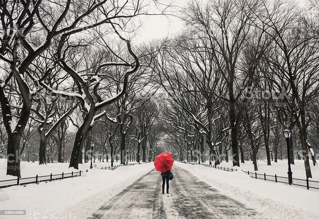 Woman walking in the snow at Central Park, New York stock photo