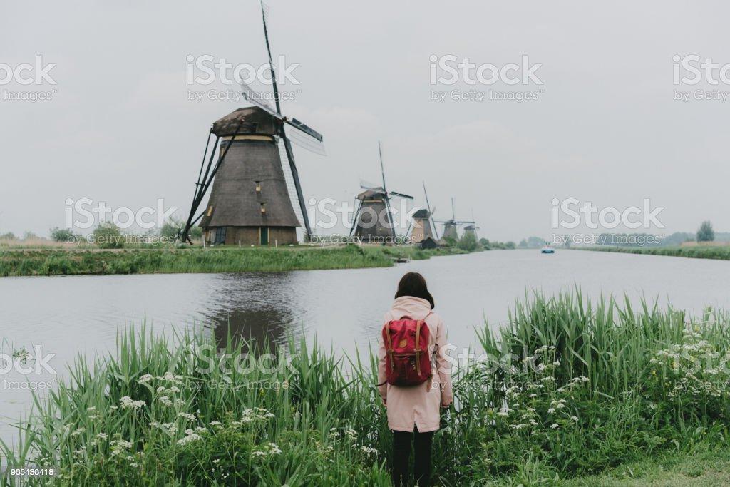 Woman walking near windmills in the Netherlands royalty-free stock photo