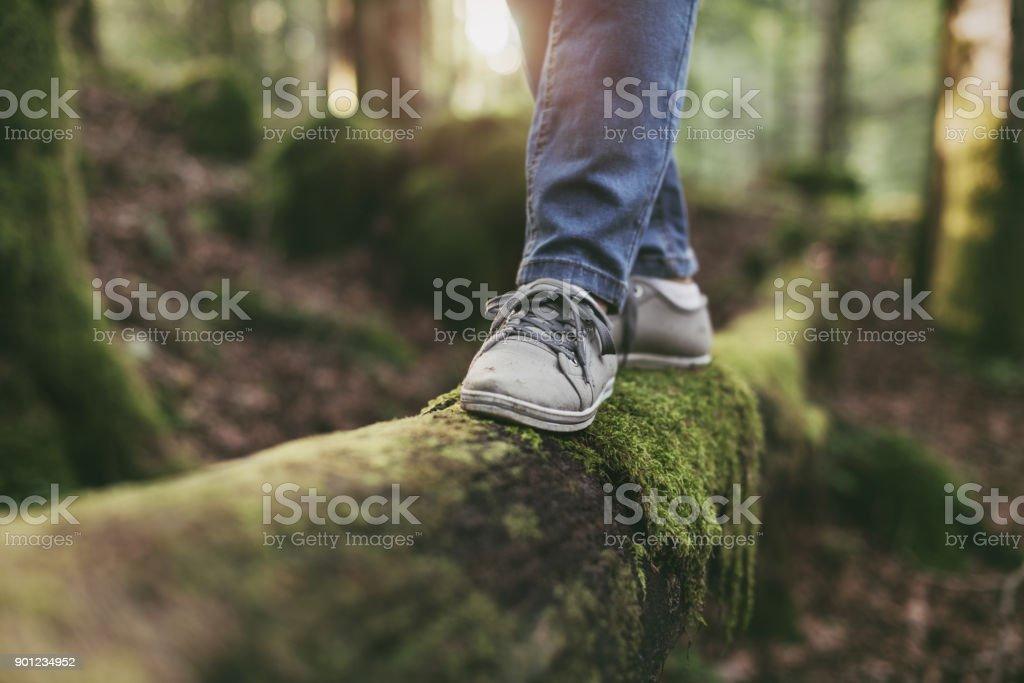 Kvinnan promenader på en stock i skogen bildbanksfoto