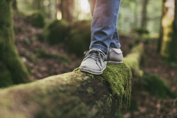 Woman walking on a log in the forest stock photo