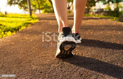 istock Woman walking on a path 503818820