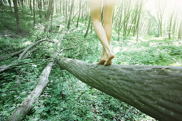 donna camminare su log nella foresta di faggi - forest bathing foto e immagini stock