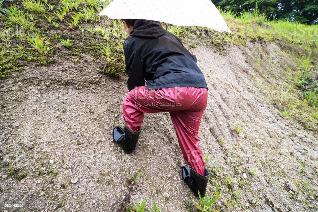 Femme qui marche sur le sol photo libre de droits