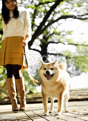 istock Woman Walking with a Dog 656339280