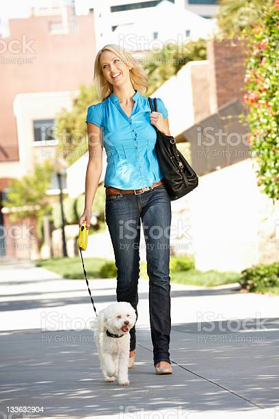 Woman walking with dog in city street picture id133632904?b=1&k=6&m=133632904&s=612x612&h=e6lqfyysvdi670dyzl1 zxmivctg7pkcoweemfzzkia=