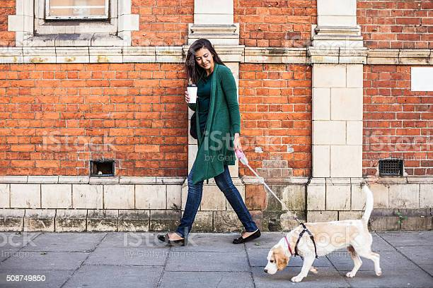 Woman walking with dog in early sunday morning in london picture id508749850?b=1&k=6&m=508749850&s=612x612&h=do v0kejtqh0 kgg3ky rlgatrc2kxi1v6ocllmutl0=
