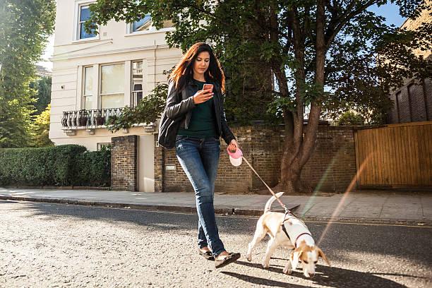 Woman walking with dog in early sunday morning in london picture id508754826?b=1&k=6&m=508754826&s=612x612&w=0&h=3gi0oscrabirwxjtcjknrsqutsfhvuyajbjnjmjmnvu=