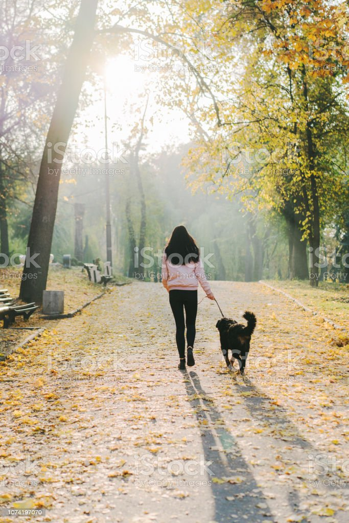 Young Caucasian woman walking with dog in park in autumn