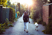 one woman only, domestic dog, Montreal, walking, sunset