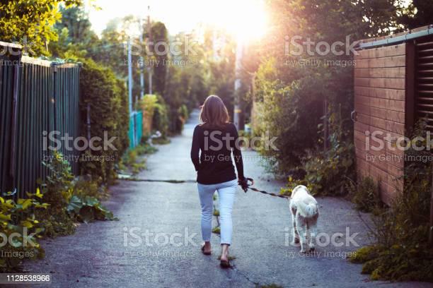 Woman walking with her dog in an alley picture id1128538966?b=1&k=6&m=1128538966&s=612x612&h=ij9kgvepqjqshpps9tkpeyfplzwrjmcsstxmv2ybtx4=