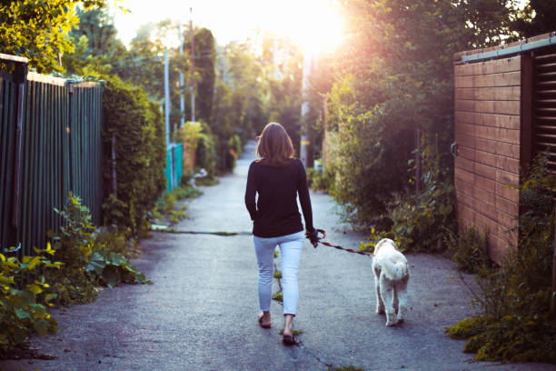 A woman walking with her dog in an alley stock photo