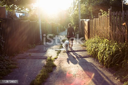 one woman only, domestic dog, walking, Montreal, sunset