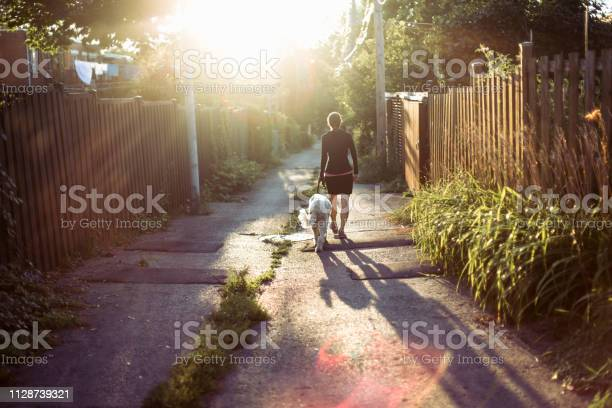 Woman walking with her dog in an alley picture id1128739321?b=1&k=6&m=1128739321&s=612x612&h=bizwg9wwo twqorh0yevboa74m8tvxy012vxyudkevo=
