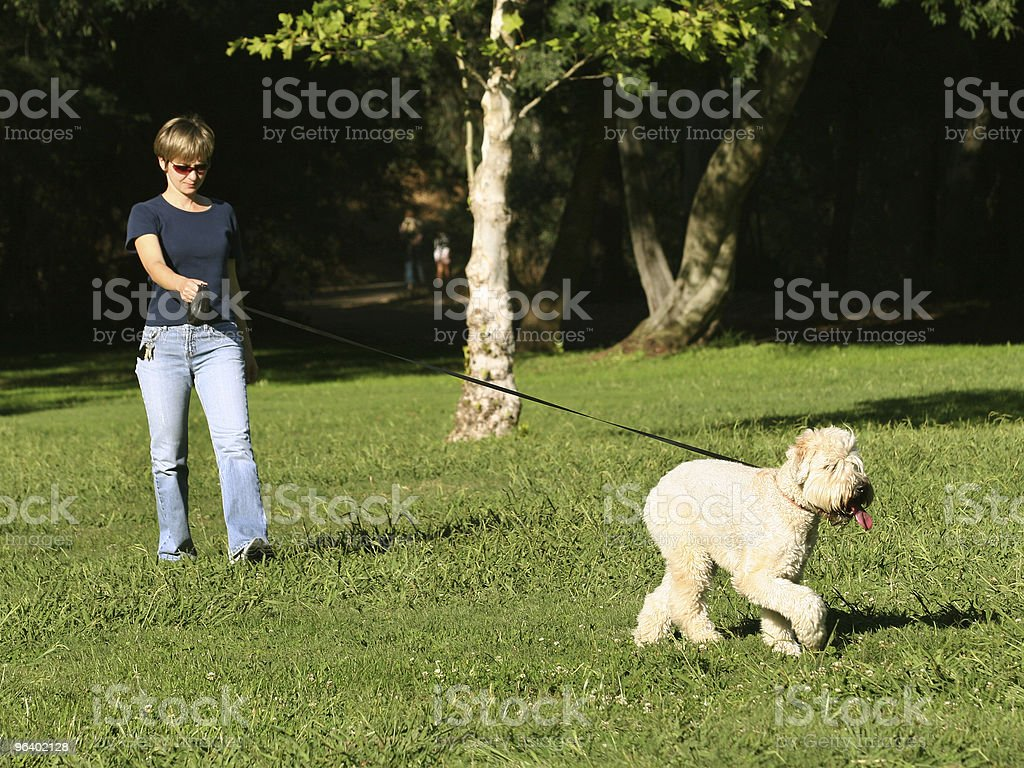 Woman walking with her dog in the park - Royalty-free Adult Stock Photo