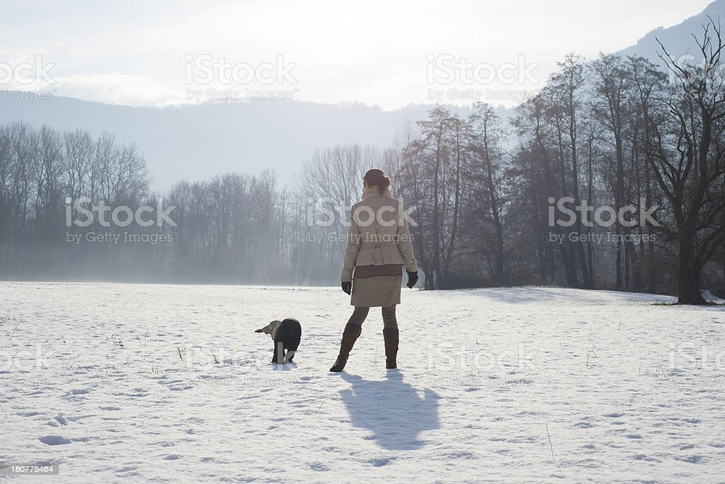 Woman walking with her dog stock photo