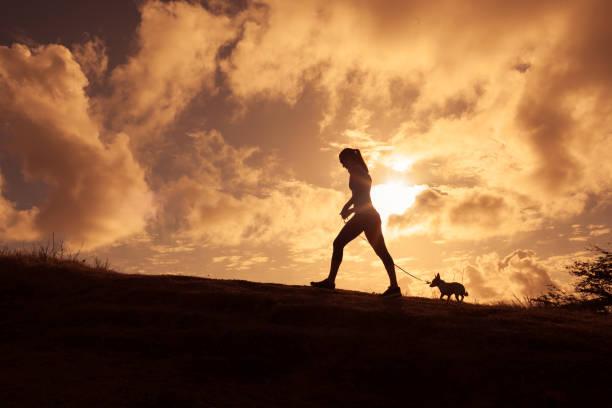 Woman walking with her dog picture id680795894?b=1&k=6&m=680795894&s=612x612&w=0&h=qmib9vkx3glh7wkvukjcjvndyhwh1np2jziicjpbfba=