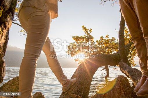 Sunlight illuminates the leaves, hazy mountains visible across the lake