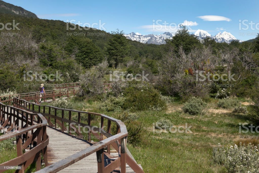 Woman walks boardwalk Darwin Mountains Tierra del fuego National Park Argentina stock photo