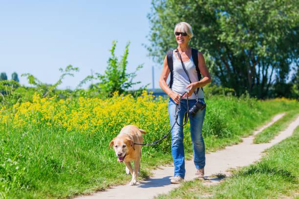 Woman walks with labrador retriever outdoors picture id694488434?b=1&k=6&m=694488434&s=612x612&w=0&h=afvifljril6vzz7vhdi mbrco0mhlr7f u7caudqdkk=