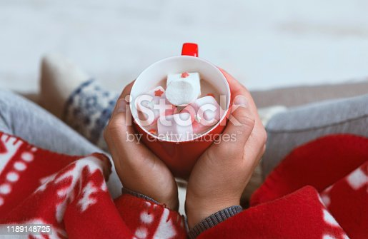 Christmas mood. Woman warming with hot chocolate at home bundling in red plaid
