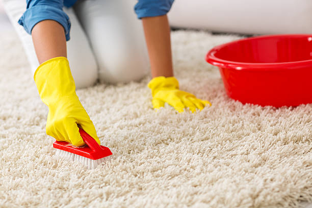 Woman washing carpet with brush stock photo