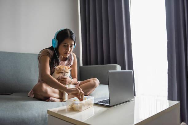 Woman watch movies with cute cat on sofa picture id986791954?b=1&k=6&m=986791954&s=612x612&w=0&h=jnrxg2njauaay8amfyotzoahpwc4xojc1q6obutv4mq=