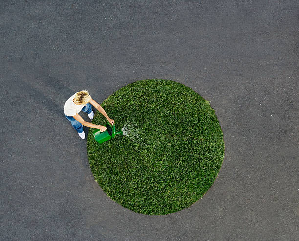 woman watering circle of grass on pavement - 圓形 個照片及圖片檔