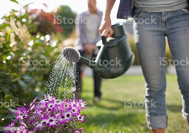Woman watering flowers in garden with watering can picture id137086506?b=1&k=6&m=137086506&s=612x612&h=2gilrhrdxwkdlwhv2bid11ra8is88hubmmzqthweo7c=