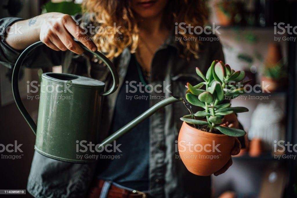 Vrouw drenken bloemen - Royalty-free Alleen volwassenen Stockfoto